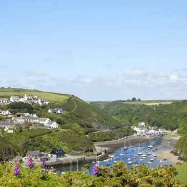 Pembrokeshire Coast Path and Solva Harbour
